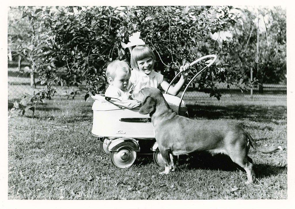 Det er min søster Ingjerd, meg og hunden Cora, som endte sine dager på jakttur med min far. Den var så sjalu på meg når jeg ble født, at de valgte å avlive den. Versjonen min søster fikk var at de hadde gitt henne bort til en bondegård...