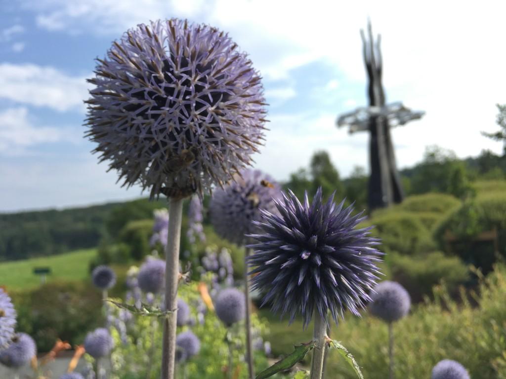 Det summer i blomstene på Storedal