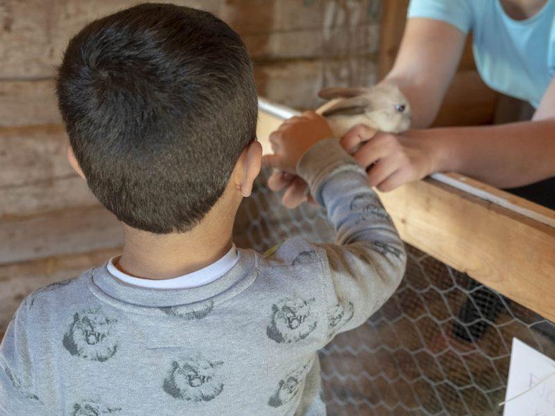 Den søte baby-kaninen fikk mye kos under Barn og dyr