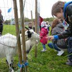 Barnas Dag 2011 hadde vi besøk av geiter og kaniner barna kunne mate og kose med. Foto Tom Lauritsen