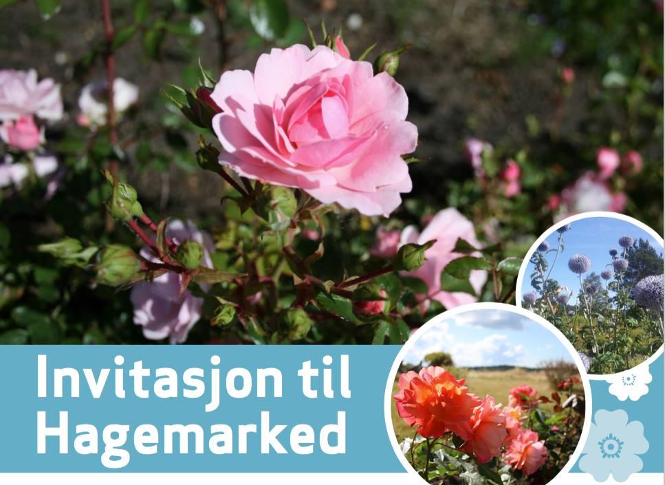 Invitasjon til hagemarked på Storedal Kultursenter