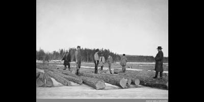 Tømmermerking i Rømskog 1904. Fotograf ukjent / Østfold fylkes billedarkiv.
