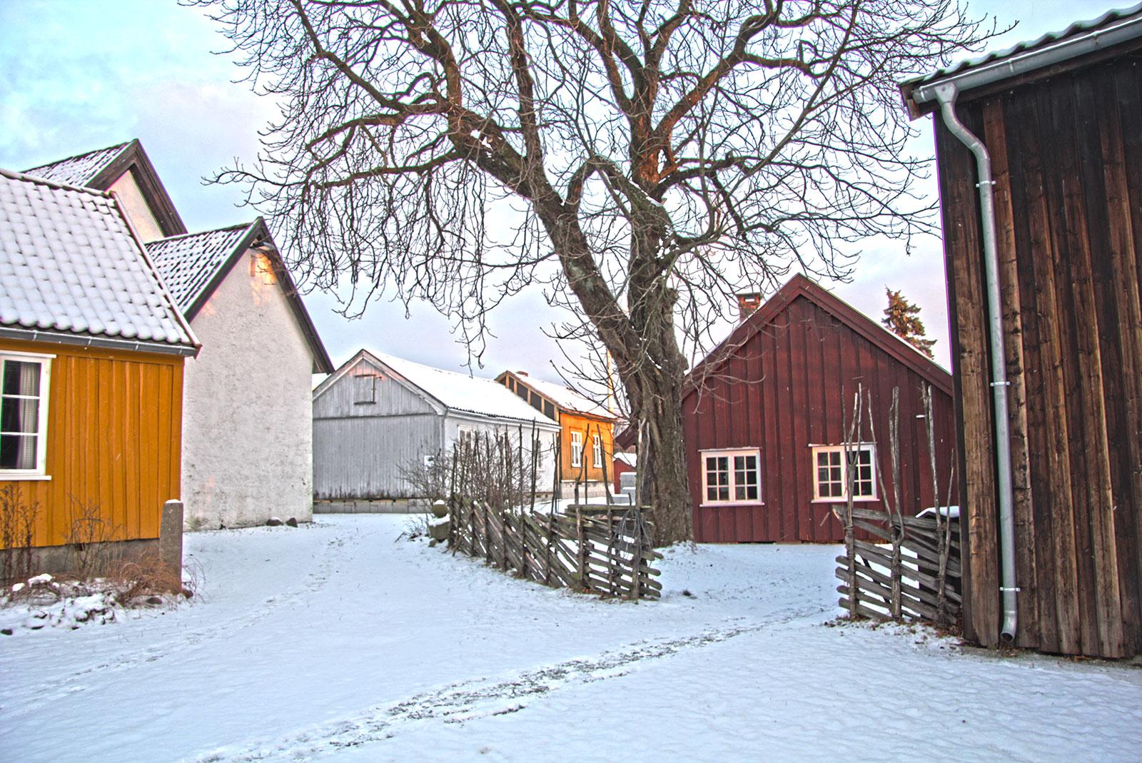Skigar Borgarsyssel. Foto: Espen Nordenhaug